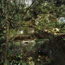 I giardini ritrovati reloaded / Davide Virdis